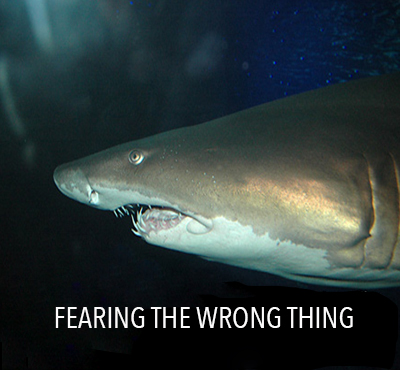 Fearing the wrong thing